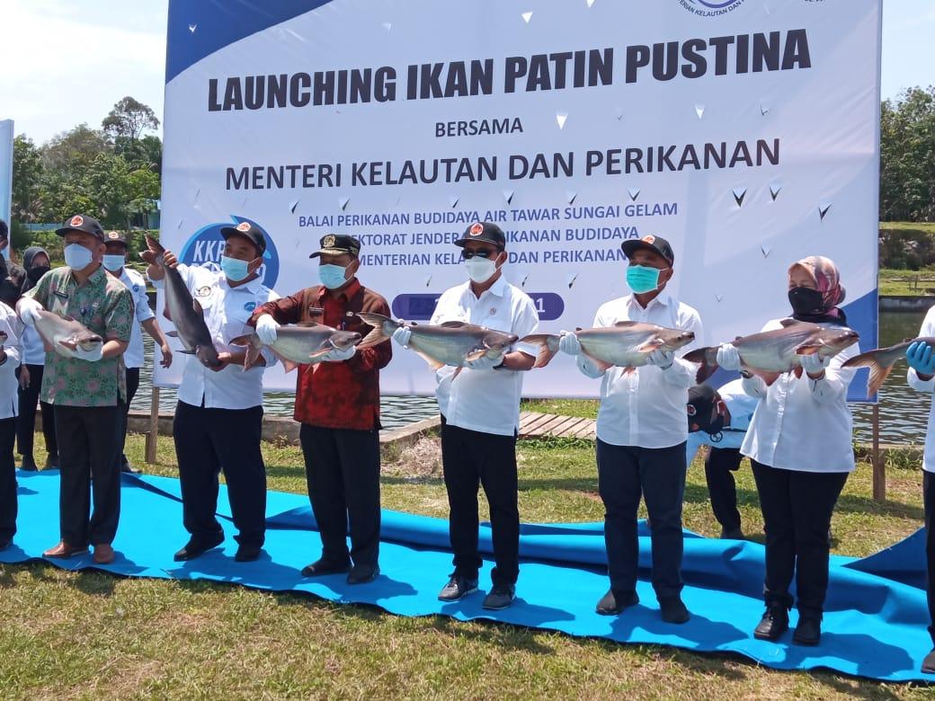 Menteri Trenggono Launching Ikan Patin Pustina di Jambi