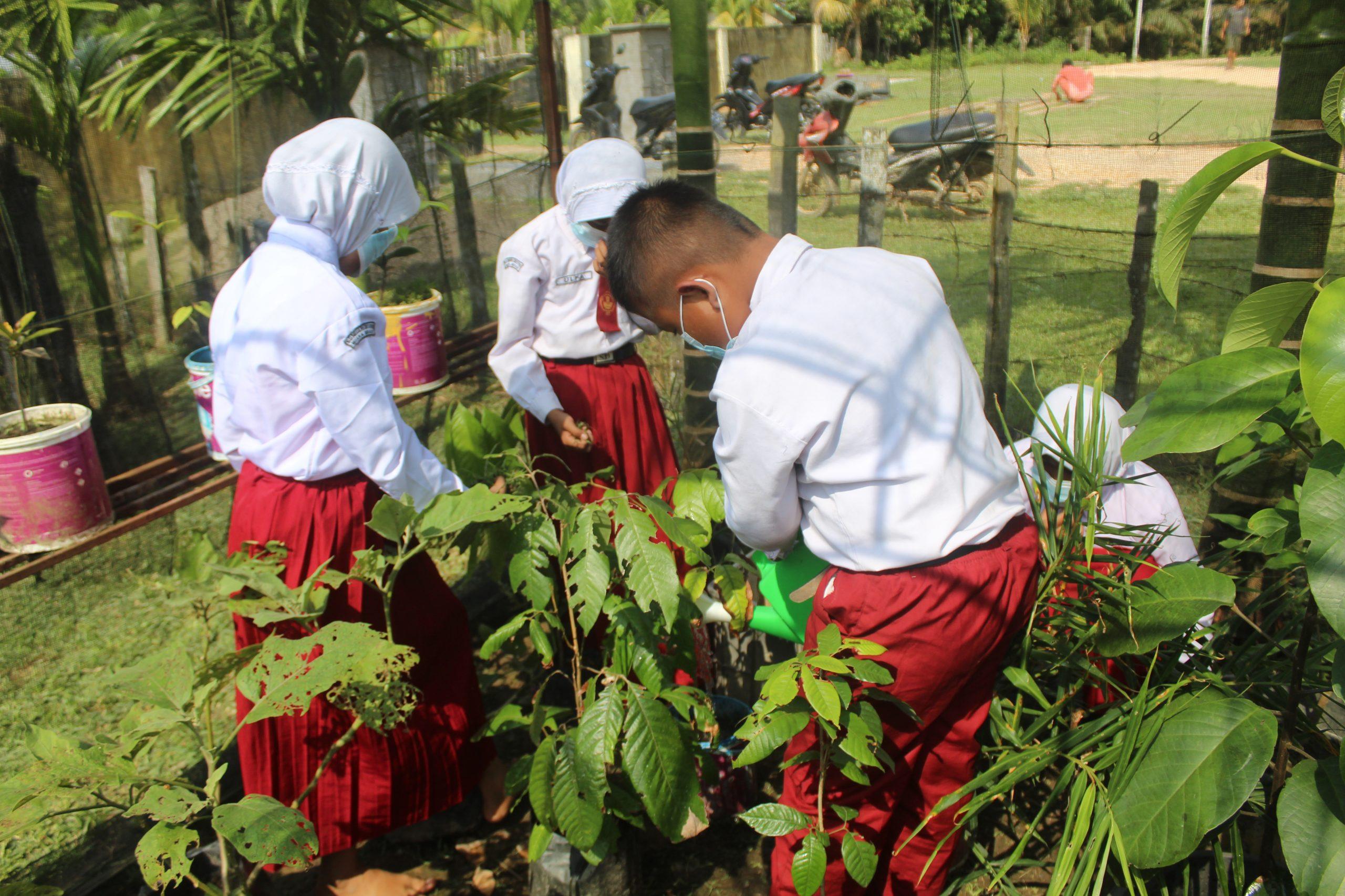 Pelajar SD Negeri 67 Muara Sekalo merawat tanaman di greenhouse. (Foto: Istimewa)